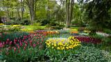 Keukenhof Gardens (3)