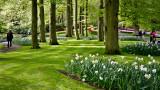 Keukenhof Gardens (12)
