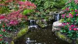 Keukenhof Gardens (5)