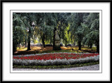 We walked through this small park on the way to the square...