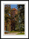 this  tower is nicely framed by the trees...