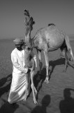 Ahmed with Camels, Wahiba Sands