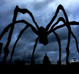 _arachnophobia