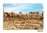 Masada's archeological finds