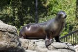 Prospect Park Zoo_02.jpg
