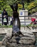 Prospect Park Zoo_03.jpg
