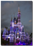 Cinderella Castle....they decorated!!