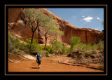 64 - Heading Down Coyote Gulch.jpg