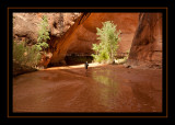 65 - Heading Down Coyote Gulch.jpg