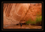 66 - Heading Down Coyote Gulch.jpg