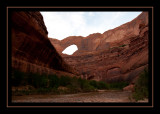 77 - Steven's Arch from Escalante River.jpg