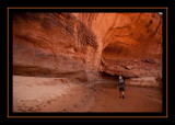 84 - Leaving Coyote Gulch.jpg