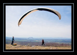 One of several paragliders on Brace Mountain