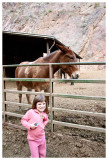 Visiting the mules