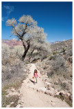 Norah on the Bright Angel Trail near Indian Garden