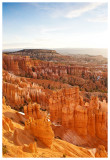 Orange hoodoos
