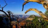 488 Grand Canyon Sunrise 9.jpg