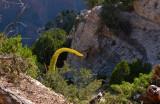 500 Grand Canyon Bright Angel Point 8.jpg