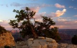 587 Grand Canyon Bright Angel Point Sunset 12.jpg
