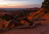 115 Bryce sunrise 1.jpg