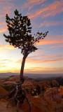 118 Bryce sunrise 4.jpg