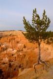 119 Bryce sunrise 5.jpg