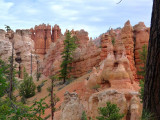 206 Bryce Canyon Mossy Cave 19.jpg