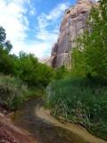 264 Calf Creek Falls hike 22.jpg