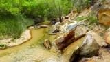 266 Calf Creek Falls hike 24.jpg