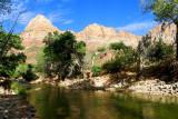 338 Zion Pa'rus Trail 5.jpg