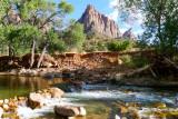 354 Zion Pa'rus Trail 21.jpg