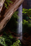 400 Zion Emerald Pools 29.jpg
