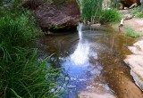 410 Zion Emerald Pools 38.jpg