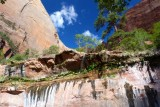415 Zion Emerald Pools 43.jpg