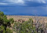 724 Mesa Verde Chapin Mesa.jpg