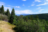 1013 High Road to Taos.jpg