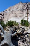 868 Tent Rocks.jpg