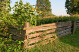 Fence Of Country Garden