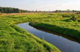 River In Green Fields