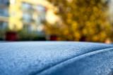 Frosty Fall