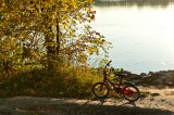 Little Bicycle Dreamig Of The Golden Fish