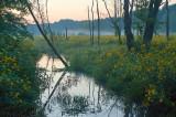 Sunset In Smolinka River