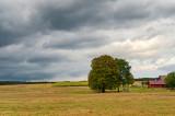 Landscape Near Werchrata