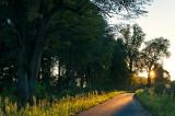 Road Of The Setting Sun