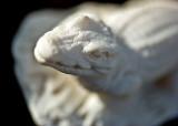 See Ya Later, Aligator :)