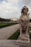 in Vienna Vervedele