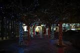 Lights @f1.4 D700
