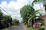 A village in Bali