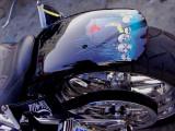POW MIA Vietnam Vet Harley Davidson