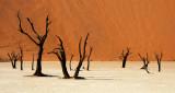 Little Kulala - Namibia